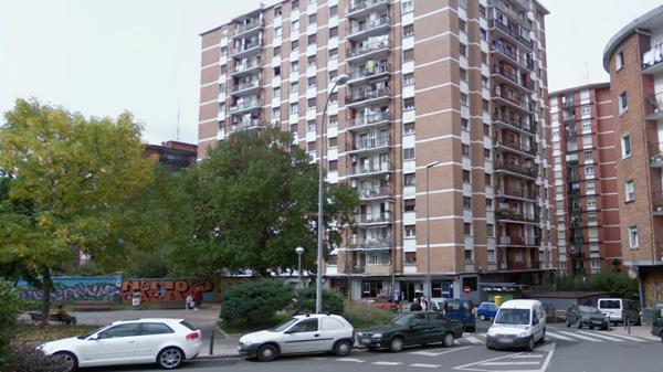 basauri_pozokoetxe_edificios_2008