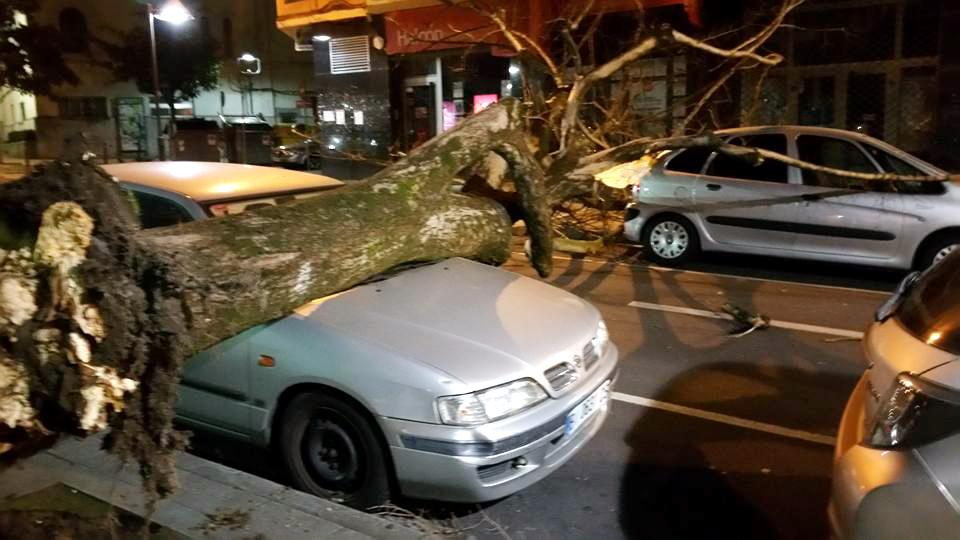 basauri-viento-2017-coche arbol-nagusia