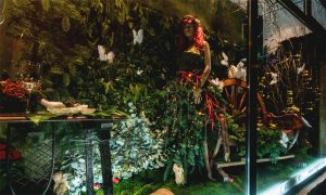 castroflor floristeria escaparate